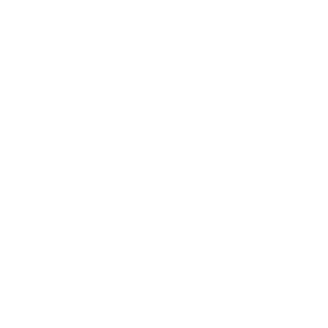 Autoglassservice